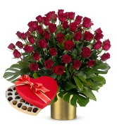 Rose Rosse Amore e Follia